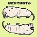 裸出歯ねずみ Naked mole rat