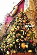 ★TDS★クリスマス2010〜♪