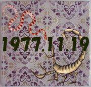 1977年11月19日(昭和52)生まれ