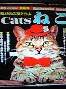 我が心の友たちよ Cats ねこ