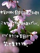 のーしん(⌒ ⌒)304集合♪