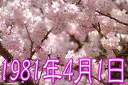 1981年4月1日生まれ
