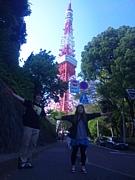 東京ぶらりたびーず