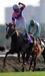 愛媛県・競馬を愛する会