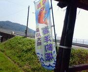 脇川大橋海洋釣堀