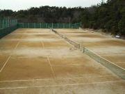 兵庫県立星陵高等学校テニス部