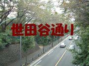 世田谷通りグルメナビ