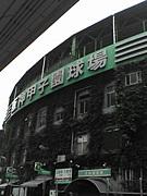 仮)阪神タイガースを応援します
