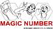 MAGIC NUMBER ��