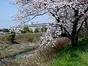 犬山市立東部中学校!
