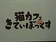 ★猫カフェ★きてぃぼっくす★