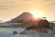 日本を護る会