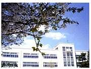 ☆1997年卒☆文関小学校☆