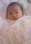 2008年1月29日生まれ