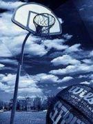 サイスタでバスケ!!
