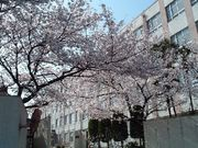 名古屋市立玉川小学校