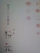 旬菜 桜花