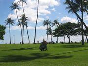 家族・子連れでハワイに行こう!