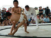 ちびっこ相撲観戦