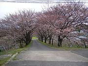 名古屋大学附属農場