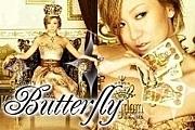 ★★Butterfly★★