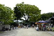 オーガニックマーケット徳島◎