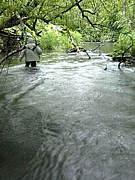 川湯温泉を拠点に釣りをしよう