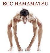 ECC HAMAMATSU