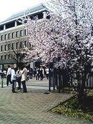桃山学院大学★☆経営学部☆★