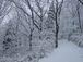 雪でテンションあがります!