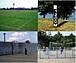 海の公園 スポーツ部