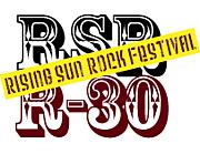 RSR�����R30��