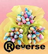 ☆Reverse☆