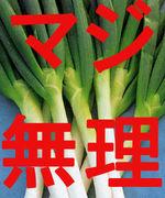 【ダメ】ネギ撲滅委員会【絶対】