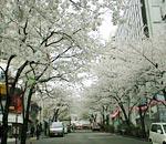 伊藤塾 塾長ライブ東京校22期