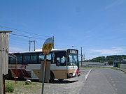 屋久島にあ(ヤクシマニア)