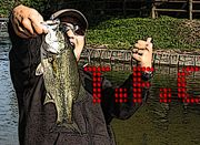 T.F.C(Tarama Fishing Club)