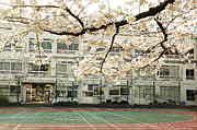 大久保小学校1994年卒業