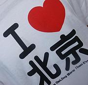 FS中国2008