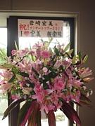 I ♥ 宏美 親衛隊 コミュ