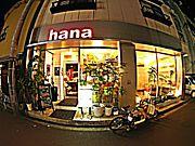 ☆bar hana☆