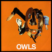 [Owls]