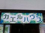 カエルハウス