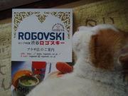ROGOVSKI☆ロゴスキー