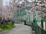柳川小学校  S53〜S54の会