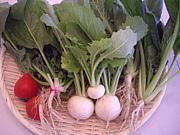 野菜ソムリエコミュニティ香川