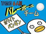 三河6人制バレー(WP)