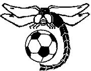 松本深志高校 サッカー部