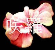 —TEAM 咲羅—