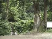ふるさとの名水めぐり新潟県